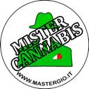 MisterCannabis userimage