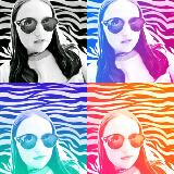 Silvercat userimage